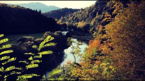 fot: domzwidokiem.com