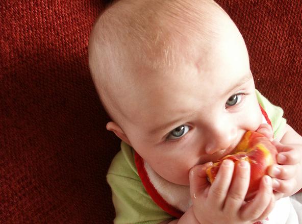 czym karmić dziecko